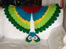 William's bird cape and mask