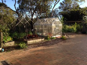 Greenhouse and vegetable garden bed