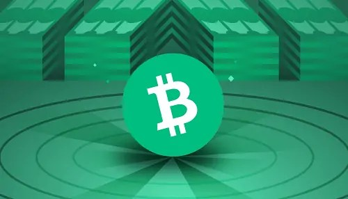 Bitcoin Cash 500x286 1 - How To Buy Bitcoin Cash