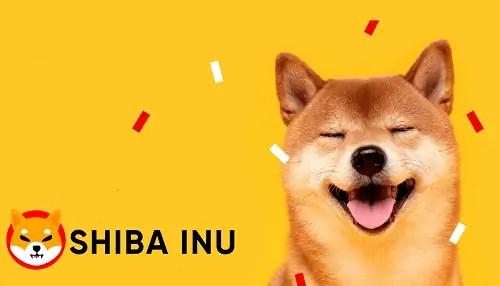 SHIBA INU 500x286 1 - How To Buy SHIBA INU
