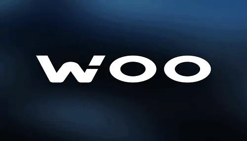 WOO Network 500x286 1 - How To Buy WOO Network