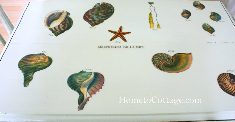 HometoCottage.com Merveilles de la mer