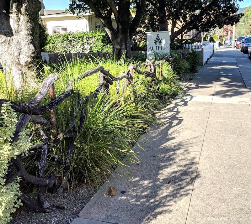 Is there anything to do in Sonoma Valley if you don't drink wine? SimpleDecoratingTips.com