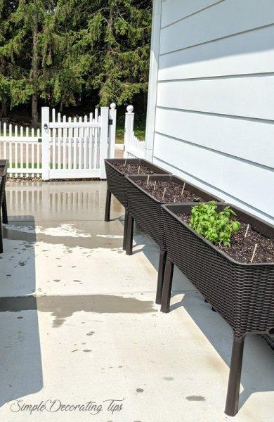 Raised Bed Container Gardening SimpleDecoratingTips.com