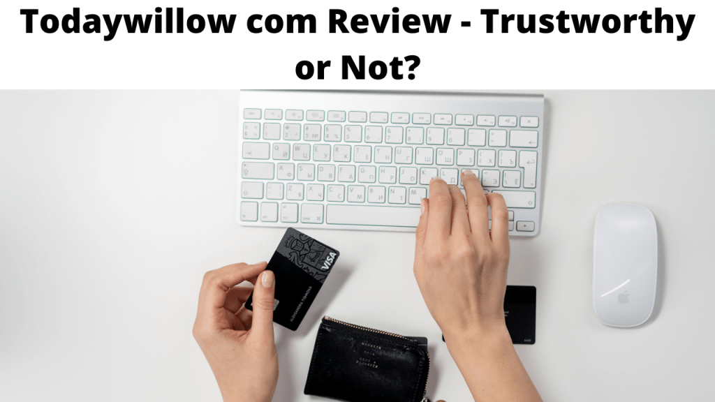 Todaywillow com Review - Trustworthy or Not?