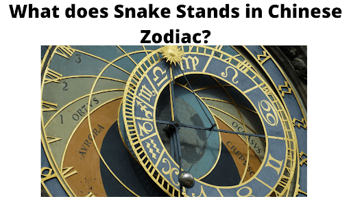 What does Snake Stands in Chinese Zodiac?