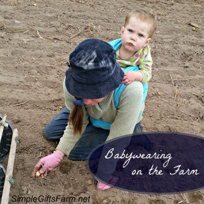 Babywearing While Planting Garlic