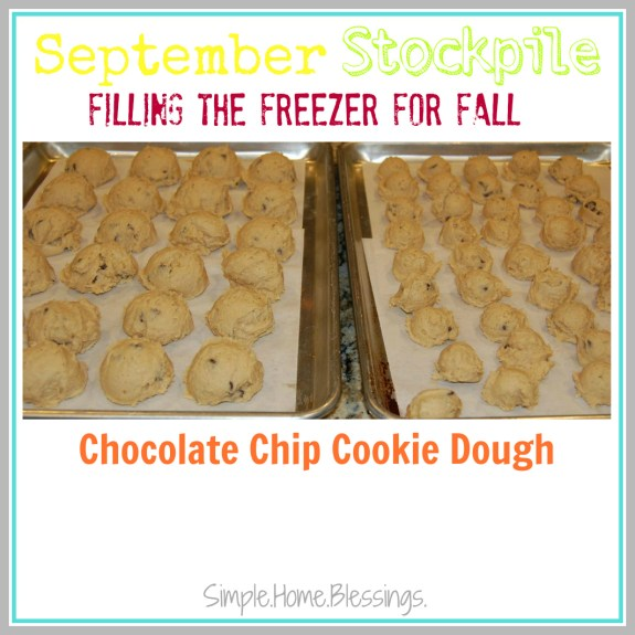 September Stockpile Chocolate Chip Cookie Dough