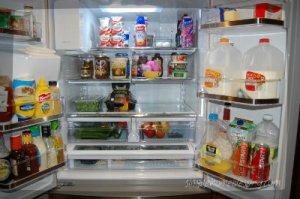 fridge after