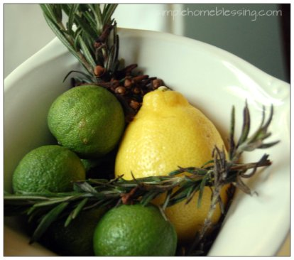 Winter into Spring DIY Home Scent