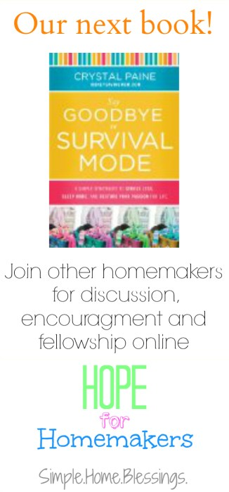 The Next Book in Hope for Homemakers, Say Goodbye to Survival Mode