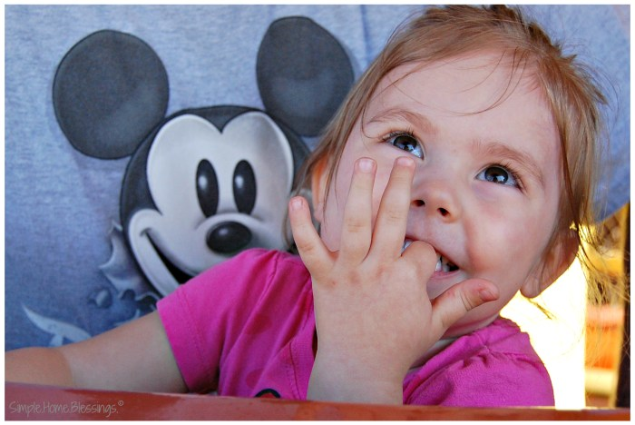 Disneyland - top Southern California Destinations for tots