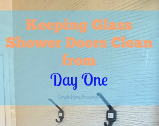 Keeping Glass Shower Doors Clean (from Day One) - Simple. Home ...