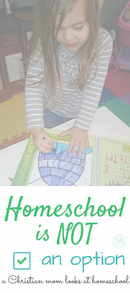 homeschool is NOT an option - some things to consider before you make the decision to home school or to send your kids to traditional school.