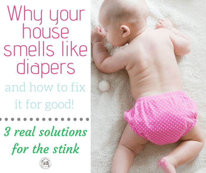 Face it: your house stinks because of diapers. Here's what you did wrong and how to fix it fast! These are the diaper pail solutions you NEED!