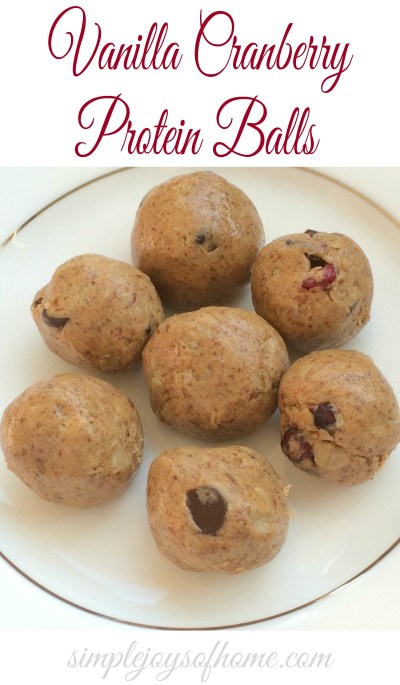 Vanilla Cranberry Protein Balls at Simple Joys Of Home