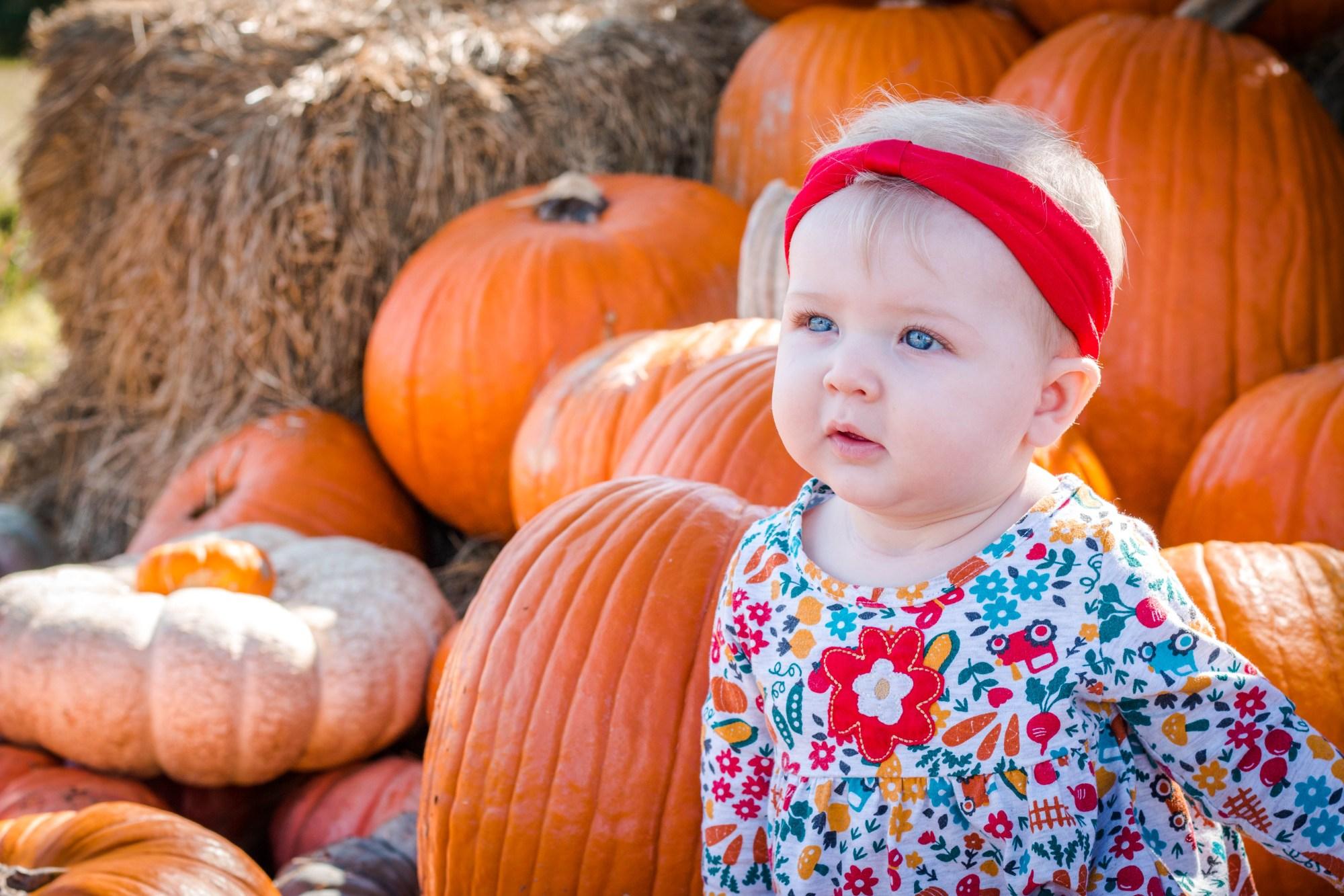Dakota Pumpkin Patch-9