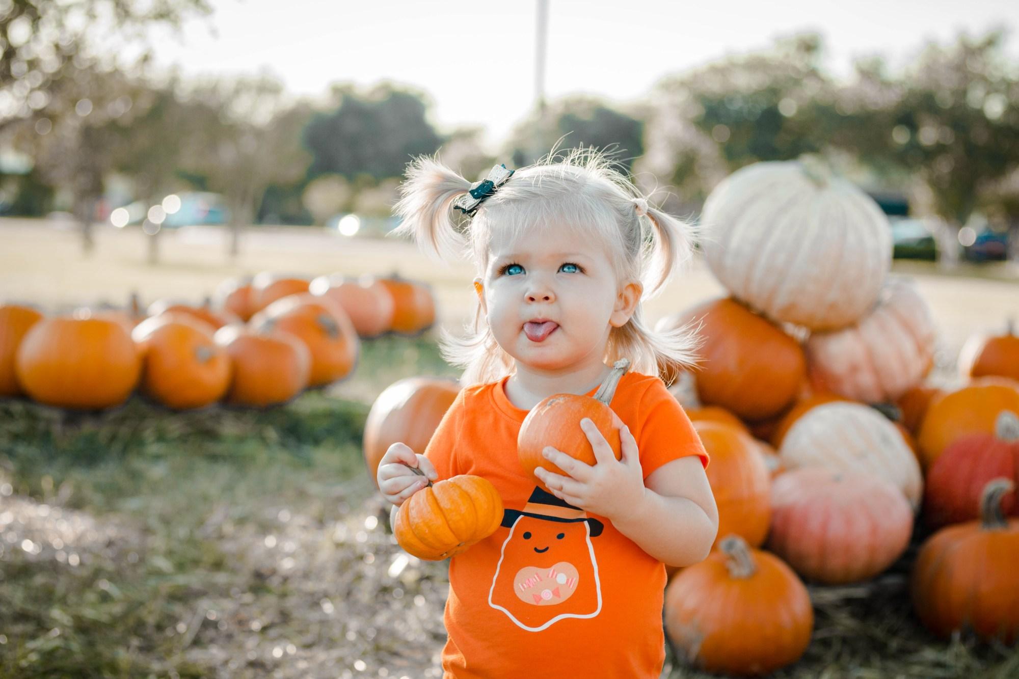 Dakota Pumpkin 2019-12