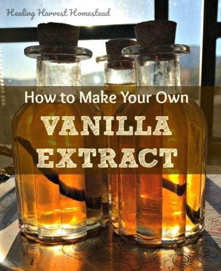 Homestead Blog Hop Feature - Vanilla Extract