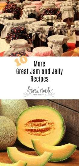 Homestead Blog Hop Feature - 10-more-jam-jelly-recipes
