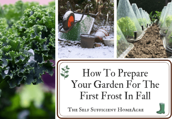 Homestead Blog Hop Feature - How-To-Prepare-Your-Garden-For-The-First-Frost