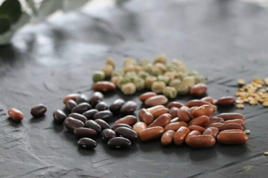 Homestead Blog Hop Feature - Organizing-Storing-Leftover-Garden-Seeds