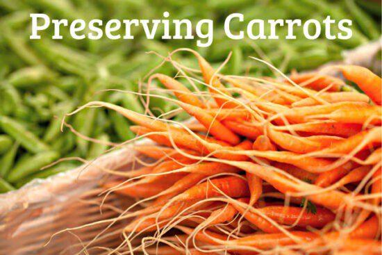 Homestead Blog Hop Feature - preserving carrots
