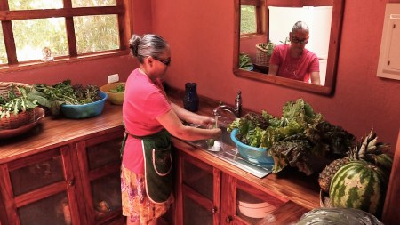 Betty cleans lettuces in the pantry.