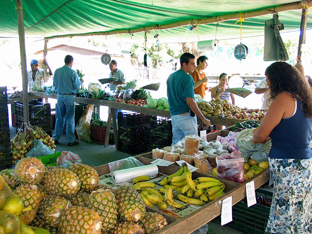 Pineapples, bananas and oranges grown locally and sold at a farmers' market
