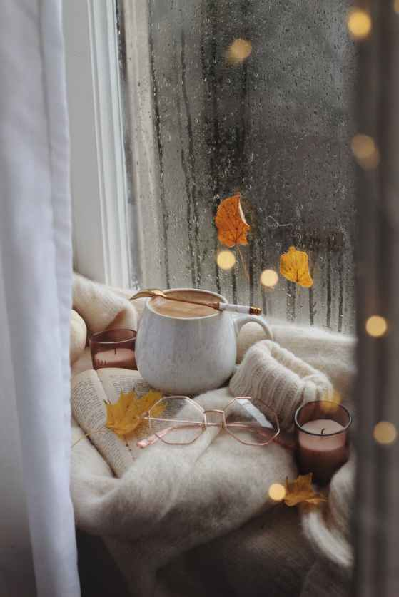 coffee glasses and sweater on book in autumn scene