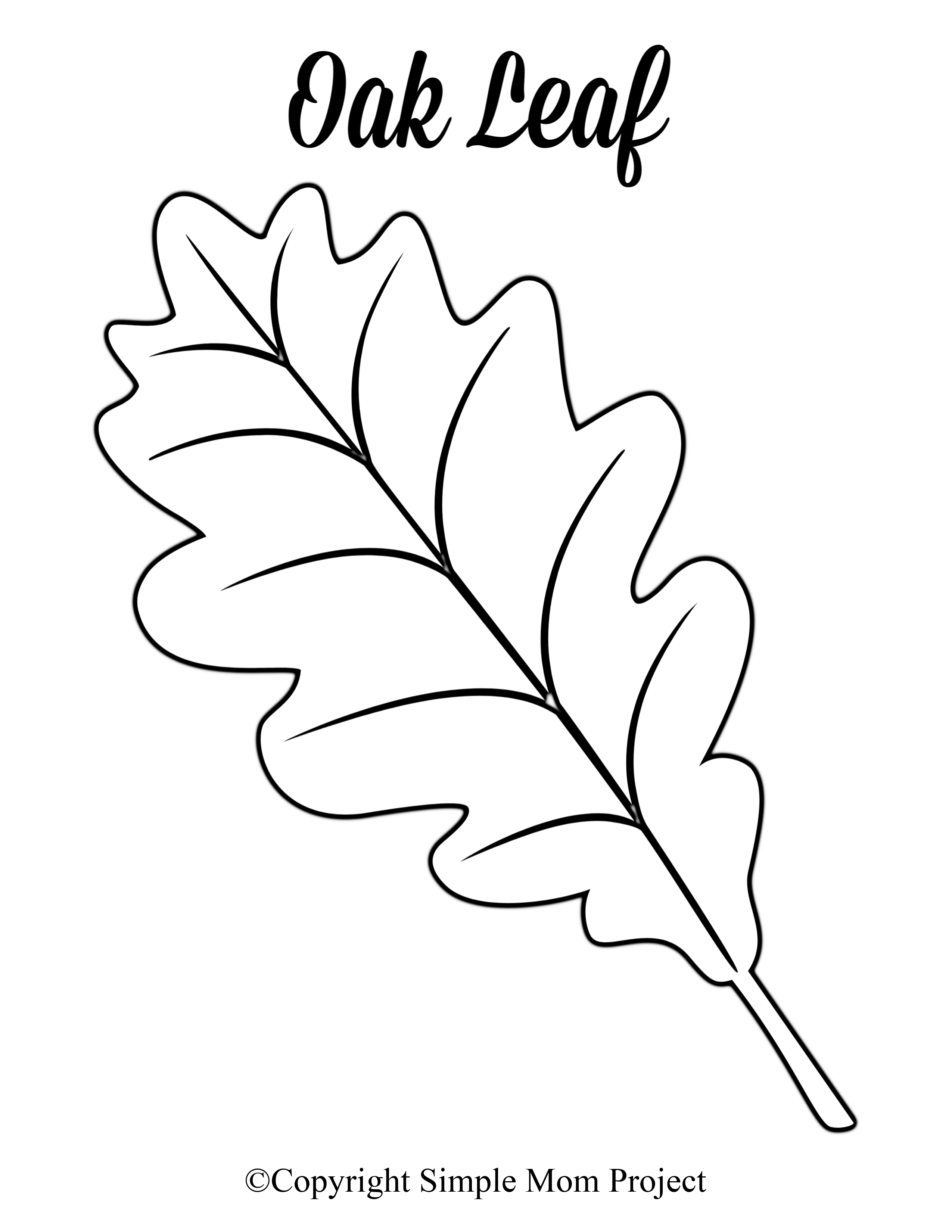 Free Printable Large Leaf Templates Stencils And Patterns