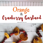 Orange Cranberry Garland Simple Mom Review