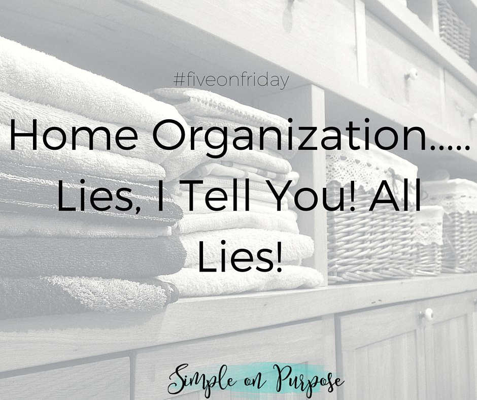 Home Organization…..Lies, I Tell You! All Lies!
