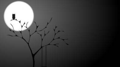 dark-owl-wallpapers-hd-pictures-images-620x349