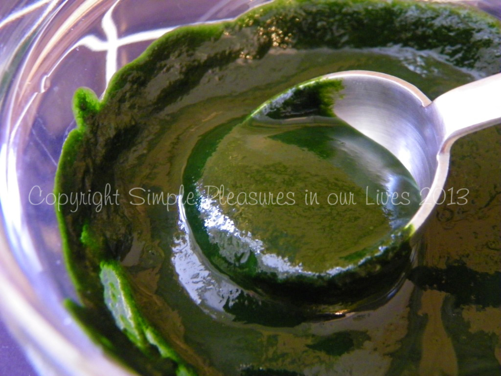 Homemade Pandan Paste