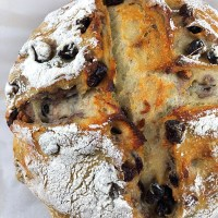 No-Knead Sourdough Cranberry-Walnut Bread