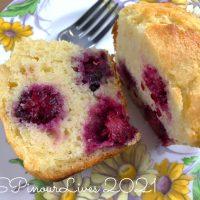 Blackberry-Citrus Jumbo Muffins