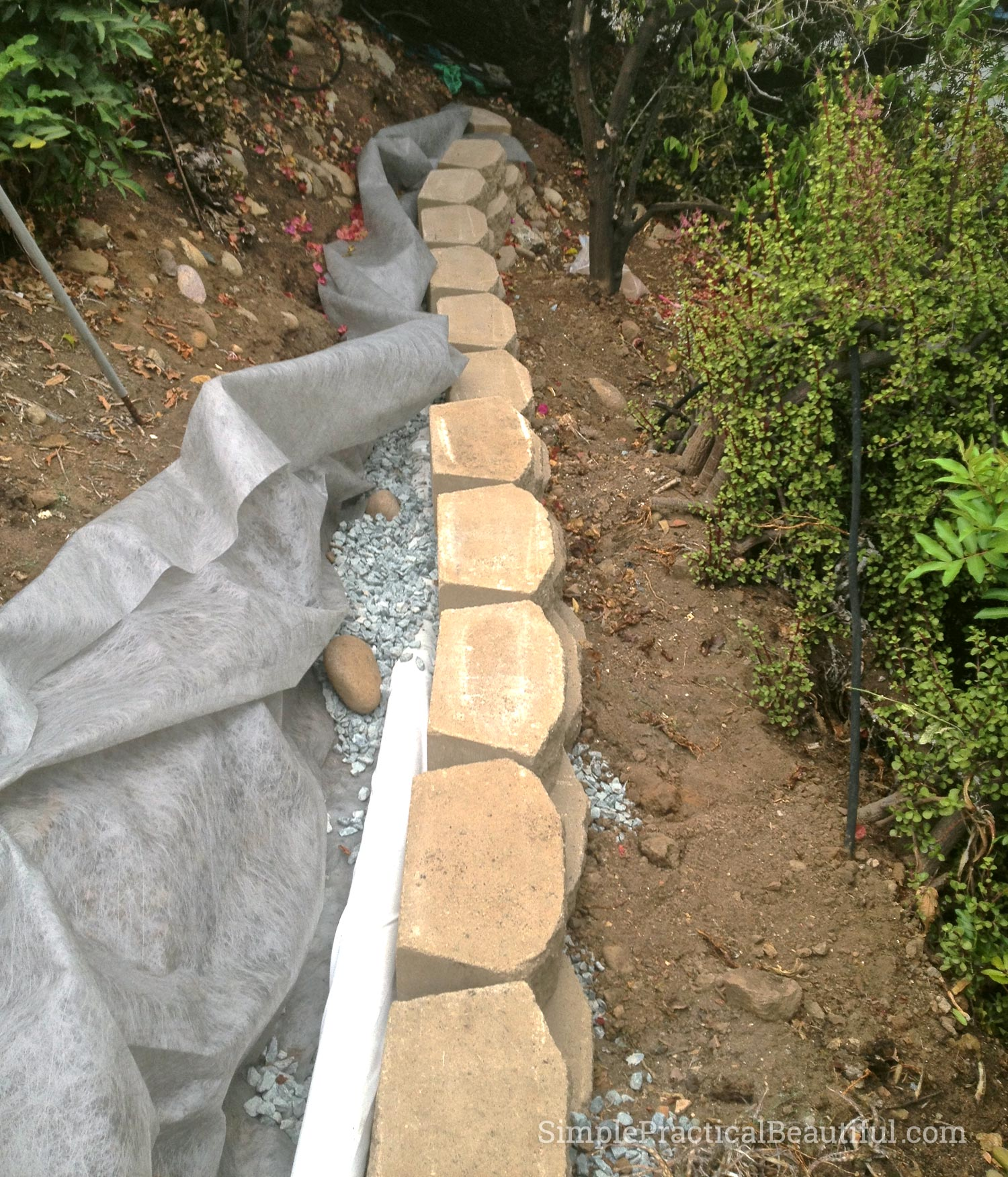 Landscape Timber Garden Bed Shallow Two Rows