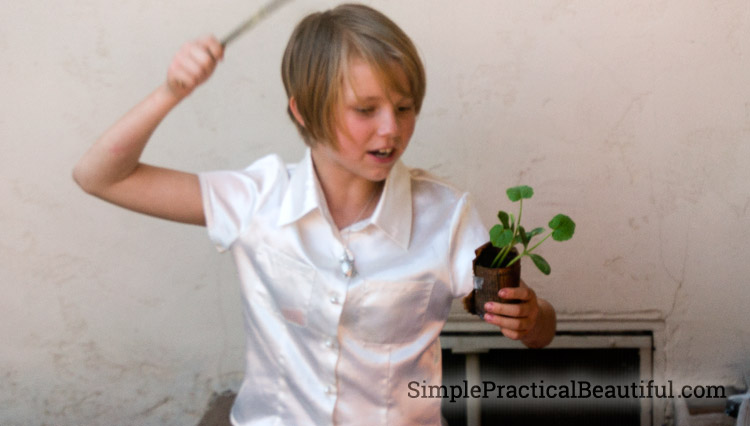 Harry Potter classes   SimplePracticalBeautiful.com