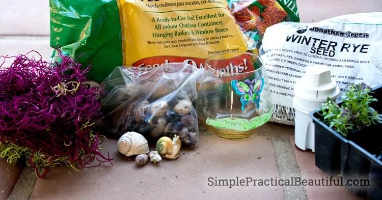 The supplies for making a terrarium
