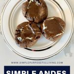 simple andes mint cookies