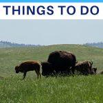 south dakota things to do with kids