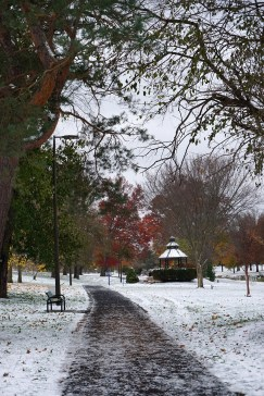 A walk in the park on a snowy November day