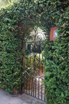 Garden gate - Charleston South Carolina