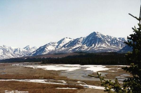 Mountain Ranges & Bison Herd
