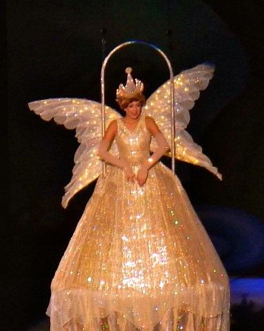 Disney on Ice Fairy Queen 2 - Simple Sojourns