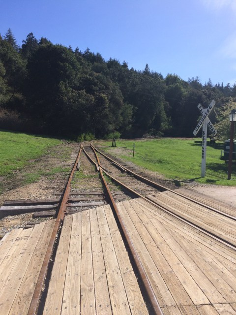 roaring-camps-train-tracks-simple-sojourns
