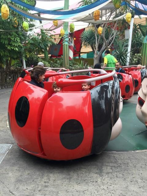 Francis' Ladybug Bug Boogie - Simple Sojourns