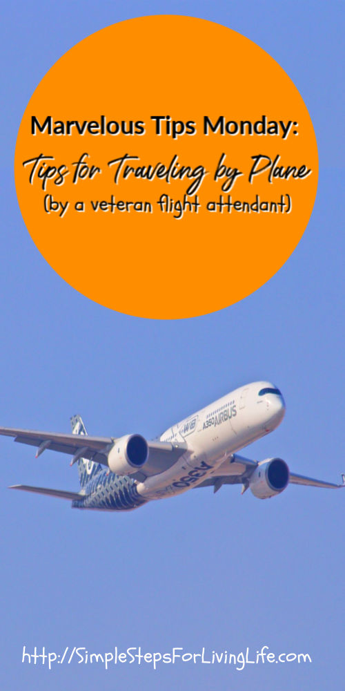 marvelous tips mondays tips for traveling by plane pin