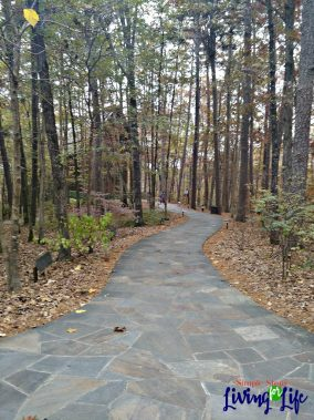 3 ideas for outdoor play in cool weather. Taking a hike.